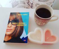 Unde ai dispărut Bernadette (cartea)